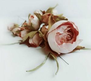 Angleška vrtnica